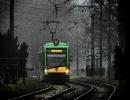Solaris Tramino #520