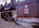 Px48-1919 w Witkowie
