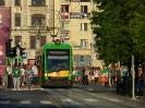 Solaris Tramino #515