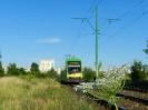 Solaris Tramino S105P #555