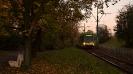 Solaris Tramino #557