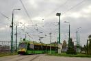 Tramino 538#