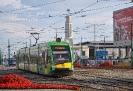 Solaris Tramino #541