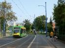 Solaris Tramino #553
